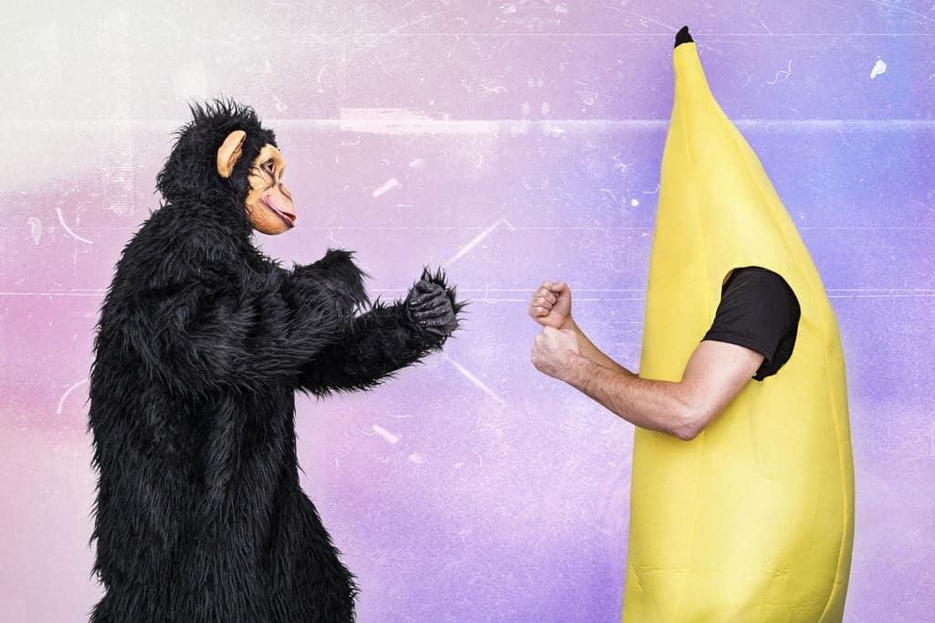 Ungleicher Kampf: In der Regel muss sich die IT-Banane dem Business-Affen geschlagen geben (Quelle: Gratisography)