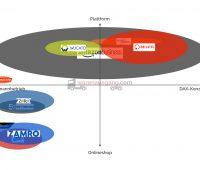 Die Spieler im digitalen MRO-Markt in Deutschland (X: Kundengröße, Y: Geschäftsmodell). Die Größe der Blase spiegelt die Marktabdeckung und Sortimentsgröße wieder. (© warenausgang.com 2016)